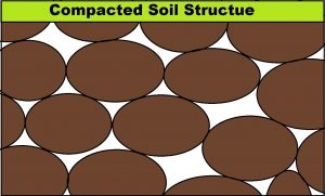 Compacted Soil Structure