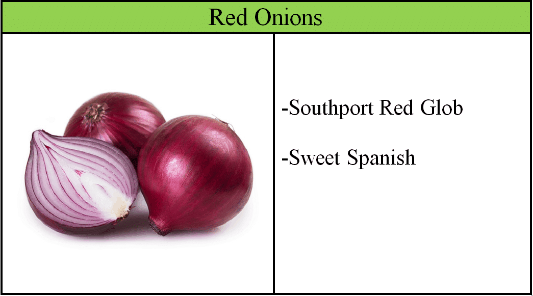 Red Onion Varieties